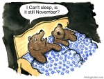 bear with insomnia