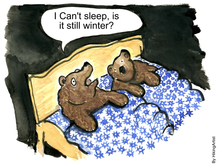 bear lying in the bed trying to hibernate