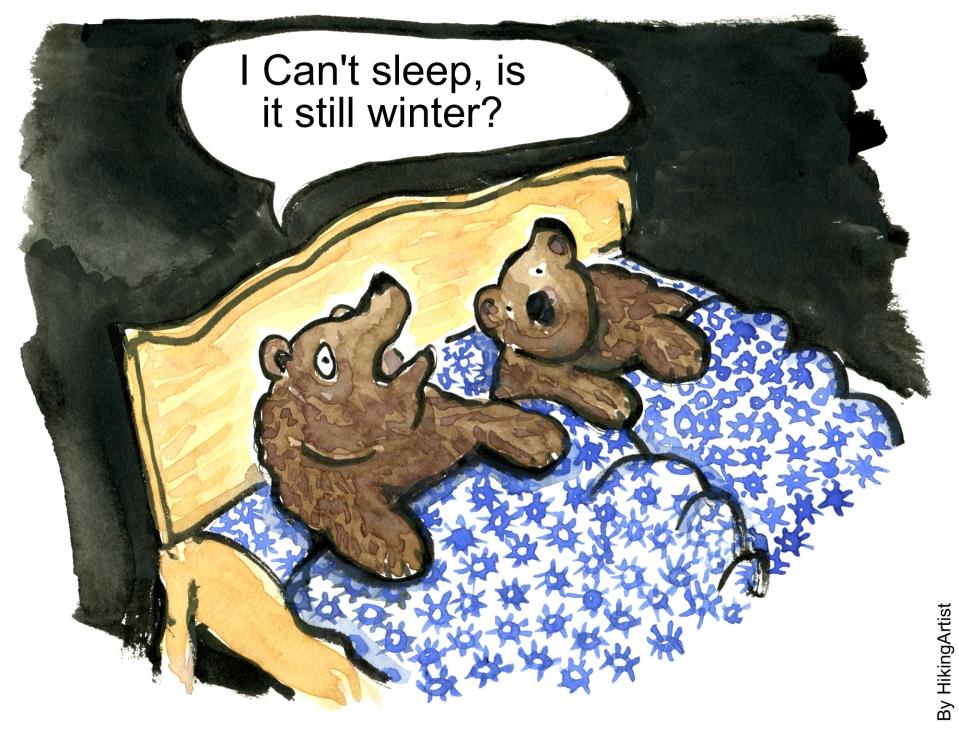 bear cant sleep winter hiking artist basecamp. Black Bedroom Furniture Sets. Home Design Ideas