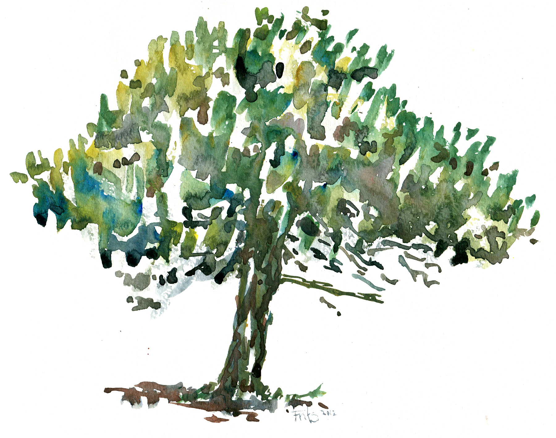 bornholm-galokken-tree-watercolor | The Hiking Artist project by ...