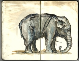 Moleskine sketch from the Copenhagen Zoo