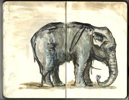 Moleskine sketch from the Copenhagen Zoo