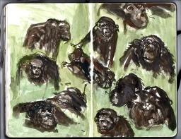 Moleskine Monkeys Zoo