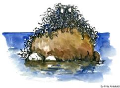 sea monster, Bornholm, Denmark. Watercolor