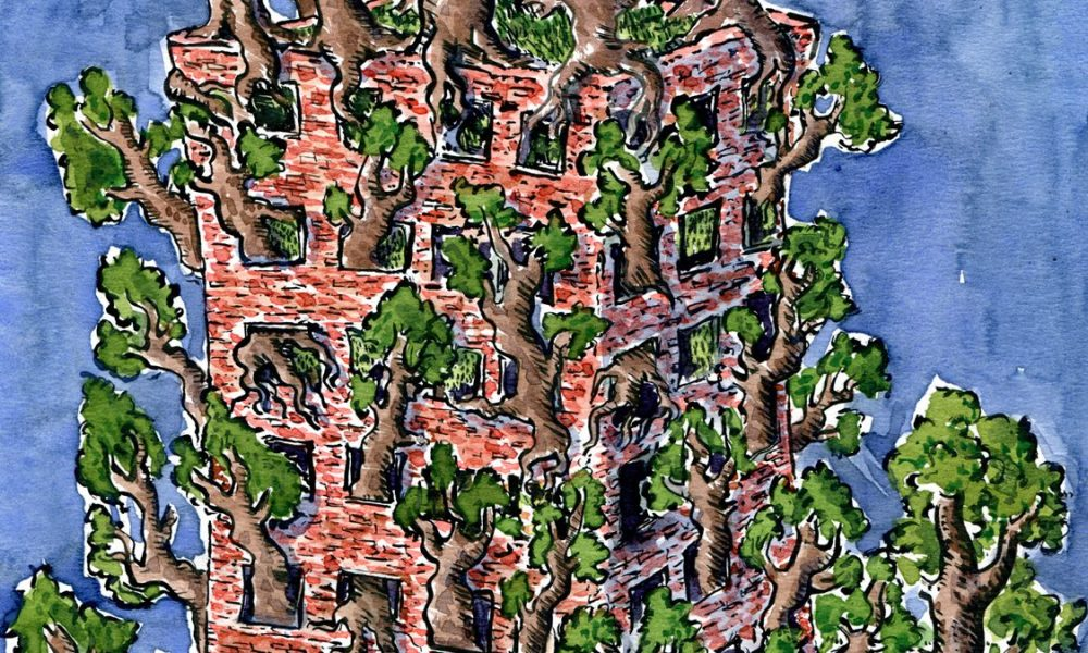 drawing of trees in a building