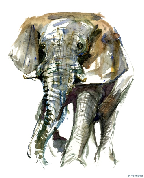 Watercolor of elephant