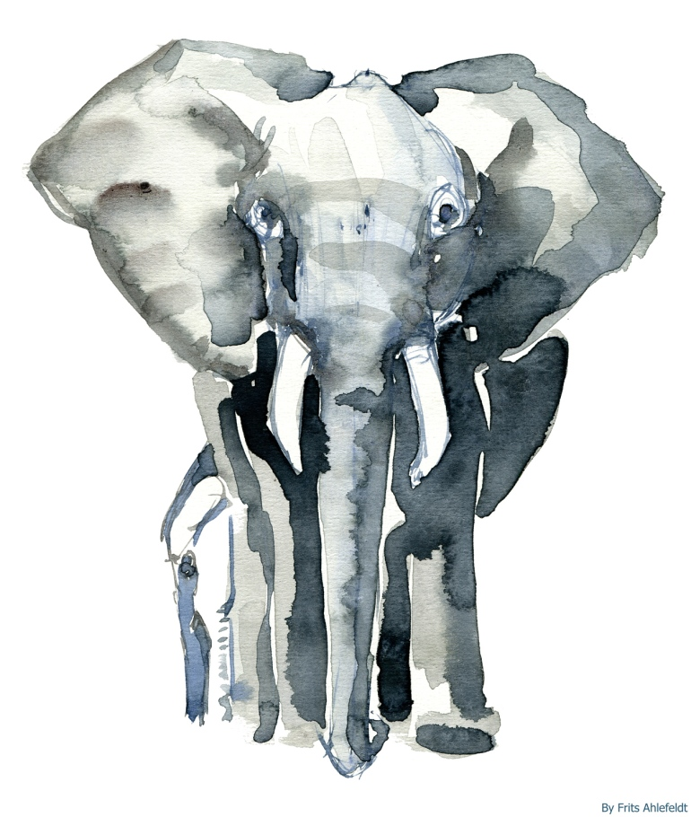 Elephant with ofspring