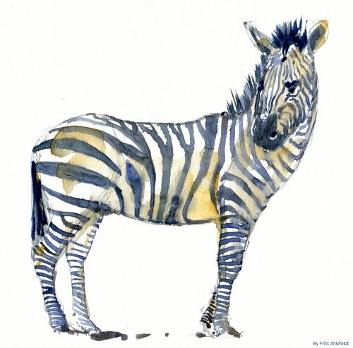 Watercolor of an zebra