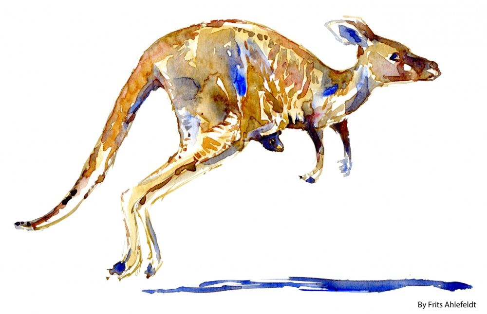 Watercolour, jumping kangaroo