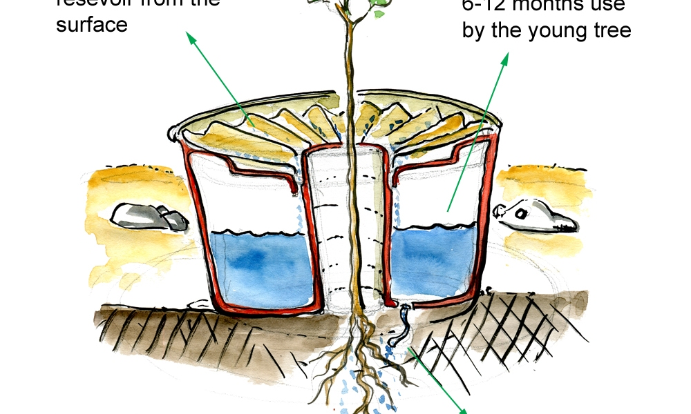 sketch of the Waterboxx