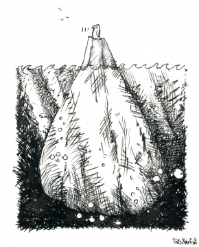 Penguin on an iceberg, with fish and turtle, ink drawing