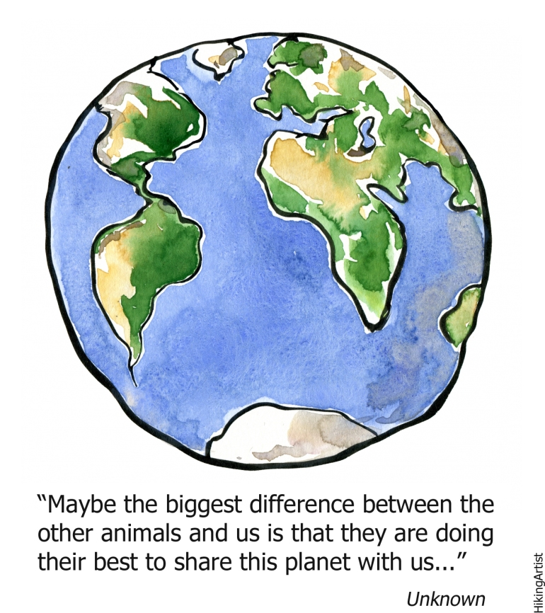 Drawing of earth with text wondering about the difference between humans and animals about how they try hard to share this planet with us