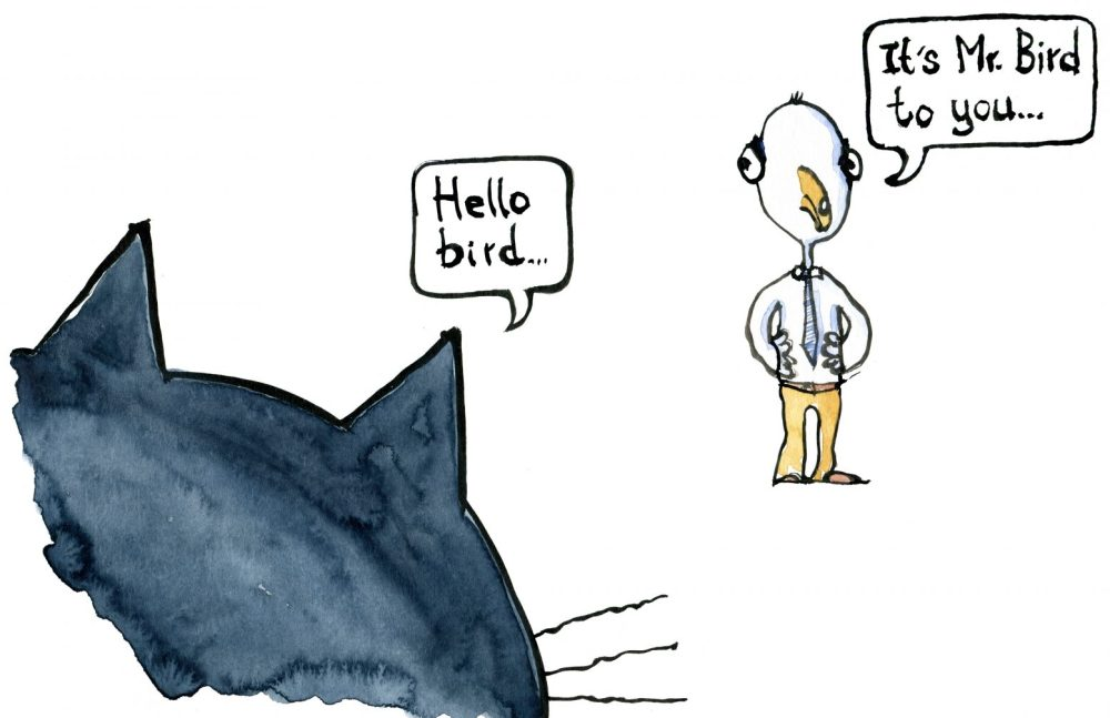 """Drawing of a cat saying """"hello bird"""" and the bird say """"its mr. bird"""""""
