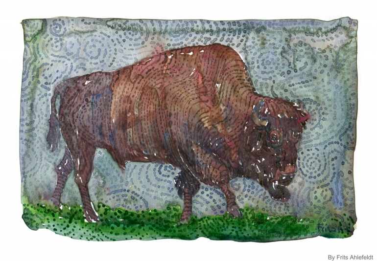 Watercolor painting of a Buffalo, sideview