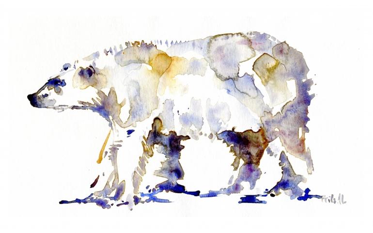 watercolour of an ice bear