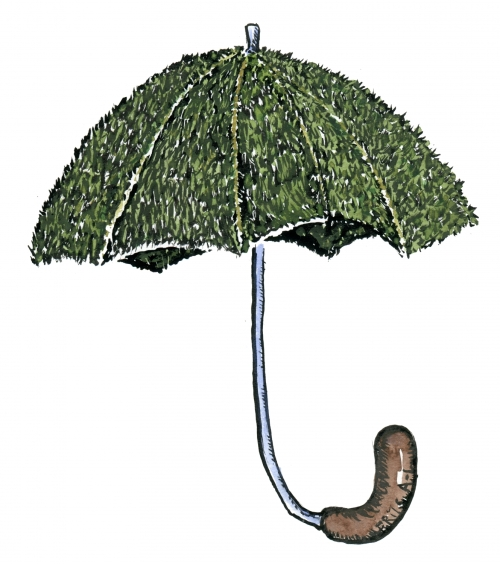 Drawing of a umbrella covered with grass