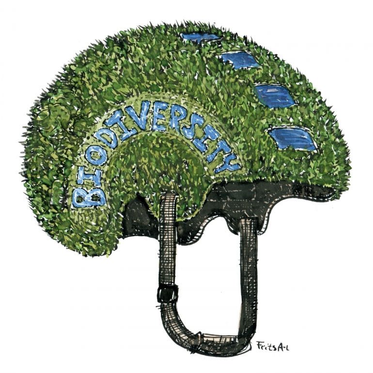 illustration by Frits ahlefeldt of a green nature helmet with biodiversity written on the side
