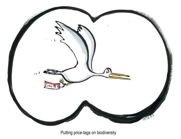 Bird flying with price tag