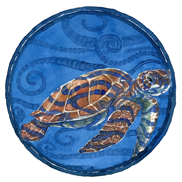 Watercolor of a sea turtle in a circle