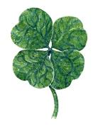 Four leaf clover watercolor