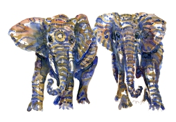 Two Elephants front view, version two. Watercolor by Frits Ahlefeldt