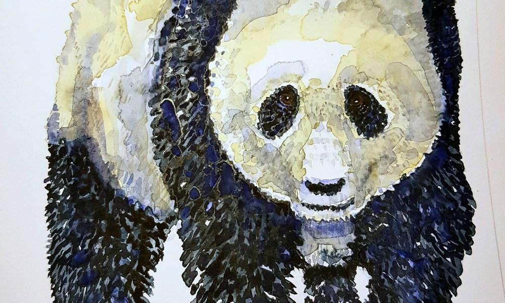 Panda watercolor by Frits Ahlefeldt