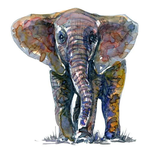 Elephant standing frong, art by Frits Ahlefeldt