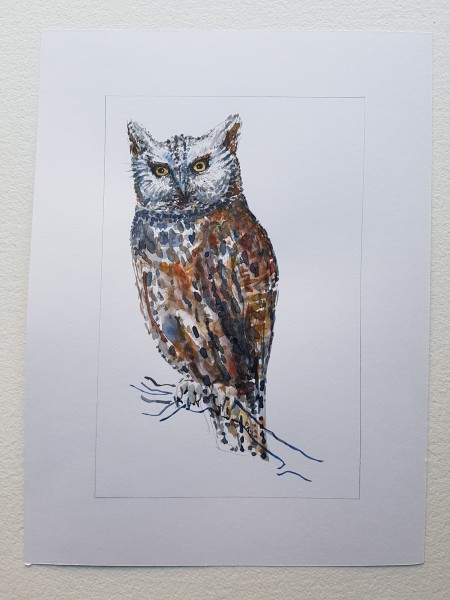 Owl original watercolor by Frits Ahlefeldt