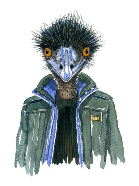 Watercolor art of an Emu bird in a green jacket, art by Frits Ahlefeldt